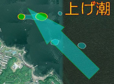 240907kannonzakishio3_2