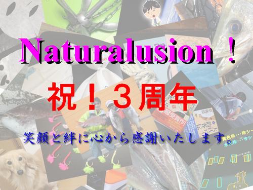 Naturalision