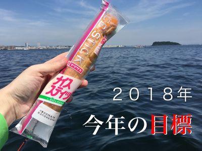 2018mokuhyou