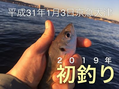 201901033